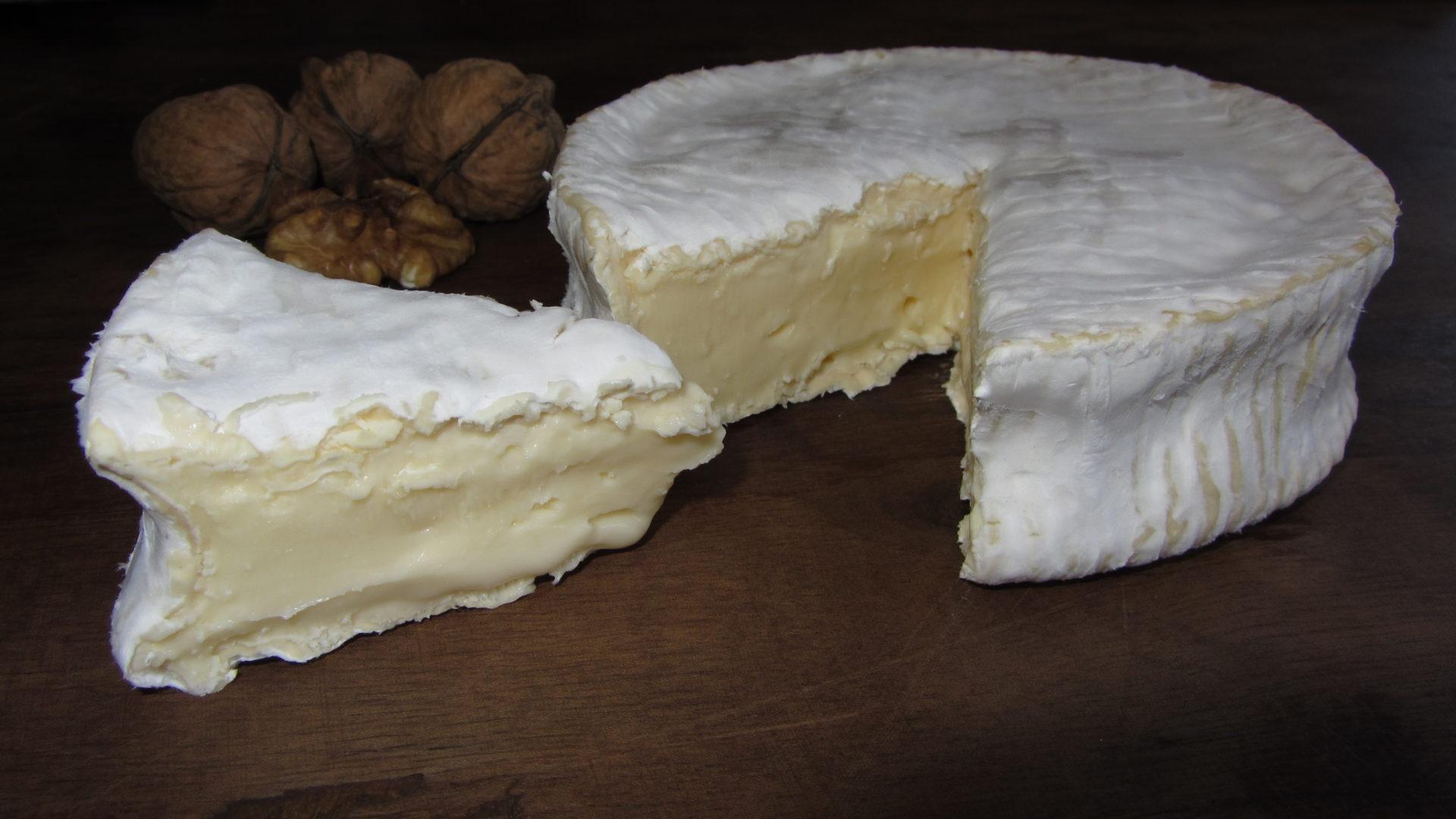 formatges riudavets formatgeria artesana catalans proximitat cabra ovella vaca llet crua Cmon Bri